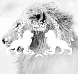 The White Lion Foundation